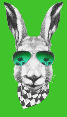 Portrait of  Hare with sunglasses and scarf, hand-drawn illustration.