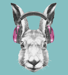 Portrait of  Hare with headphones, hand-drawn illustration