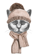 Portrait of Cat with hat and scarf. Hand-drawn illustration.