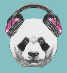Portrait of  Panda with headphone. Hand-drawn illustration.