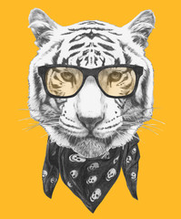 Portrait of Tiger with glasses and scarf. Hand-drawn illustration.