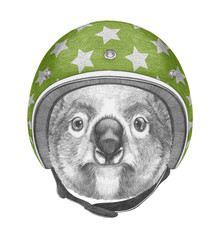 Portrait of Koala with helmet, hand-drawn illustration