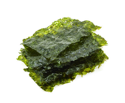 Dried seaweed isolated on the white background.