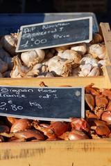 Ails et échalottes dans cagettes sur étal au marché
