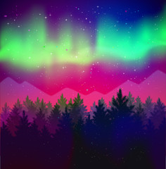 landscape with northern lights and spruce forest