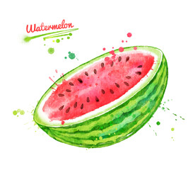 Watercolor illustration of watermelon