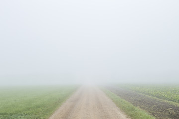 country road with thick fog