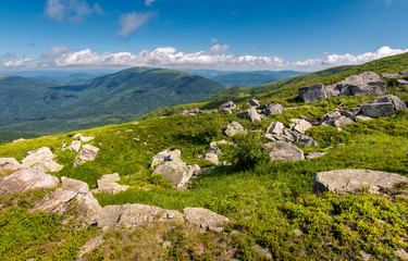 giant boulders on a grassy slope. summer scenery of Polonina Runa mountain ridge