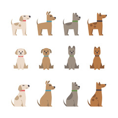 Vector set with cute cartoon dogs and puppies illustrations. Icons, design elements. Flat style. Domestic animal.