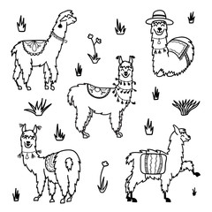 Vector set of characters. Illustration of south Americas cute lama with decorations. Isolated outline cartoon baby llama. Hand drawn Peru animal  guanaco, alpaca, vicuna. Drawing for print, fabric.