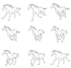 Horse running, silhouette, racecourse, competition,  sprite sheets, animation frames