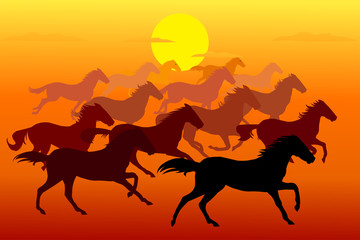 Horse running, silhouette, racecourse, competition,