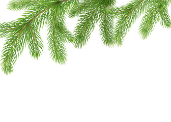 Fir branches border. Christmas tree frame, pine needles isolated on white
