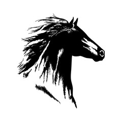 Hand drawn horse head black and white vector isolated design