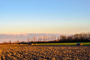 Field with sheafs by surrounded by trees by Hungarian spa town Hegyko (Hungary) in Autumn
