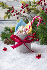 Christmas Holidays. A mug with marshmallows of different colors, on the snow. With a place for your text