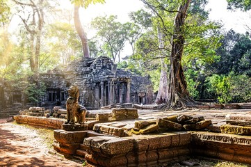 Temple in Angkor Wat, Cambodia. Sunrays on the trees.