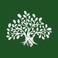 Huge and sacred oak tree silhouette logo isolated on green background. Modern vector national tradition green plant icon sign design.  Premium quality organic logotype flat emblem illustration.