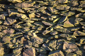 Mossy Dry stone wall bathed in early morning sunlight
