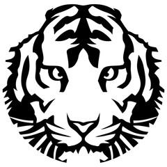 un tigre en cercle