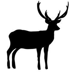 Deer profile silhouette. Lovely wild animal for posters, prints, design, Christmas, New Year banners, invitations, illustrations, advertising, decor. Wild nature, mammal. Reindeer of Santa Claus.