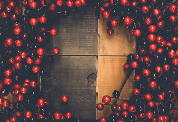 Christmas berry wreath background