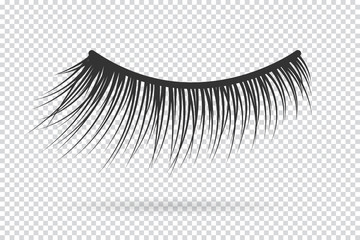 Feminine lashes vector. False eyelashes hand drawn.