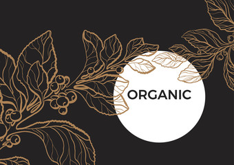 Vector nature template of mate branch. Floral art line illustration