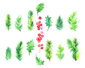 Watercolor Christmas set with mistletoe, berries, spruce branches. Hand drawn botanical collection on white background