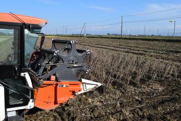 農業機械による大豆の収穫
