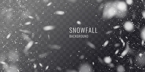 Vector realistic snowfall against a dark background. Transparent elements for winter cards Wall mural