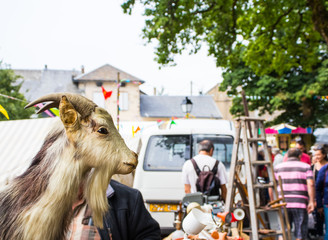 Head of scarecrow of a goat exhibited at a rural fair.