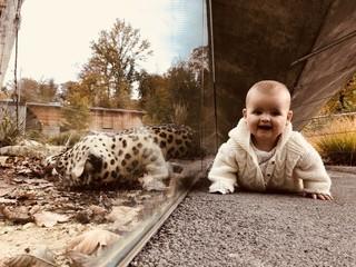 Baby neben Leopard