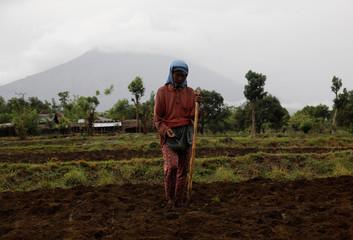 Mount Agung volcano, covered in clouds, erupts in the background as a farmer plants peanuts near Kubu, Karangasem Regency, Bali