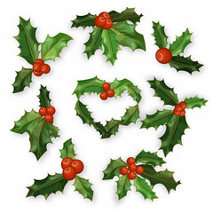 Holly berry leaves Christmas symbol set