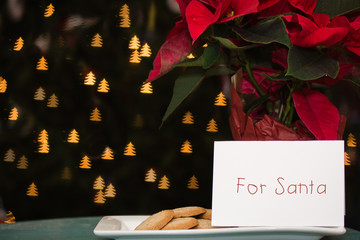 cookies and note left out for santa with christmas tree bokeh background