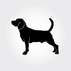 Vector Beagle Dog Silhouette.
