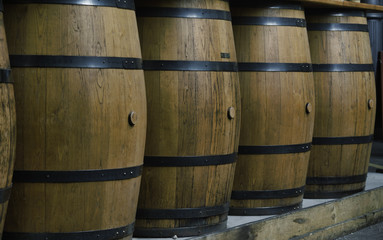 A row of vertical hooped wooden barrels