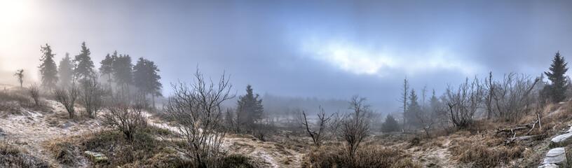 Der Große Feldberg im Taunus bei Nebel im Winter