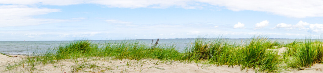 Dünen Ostsee Panorama