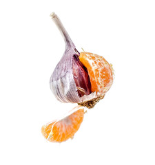 Garlic and tangerine on a white background