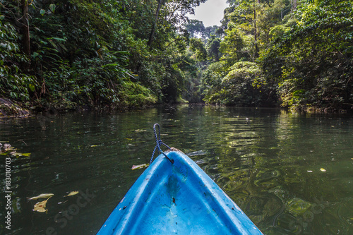 Wall mural Kayaking the Rio Claro in the jungle of Costa Rica