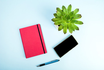 Beauty blog concept photo. Green plant, notebook, pen and mobile phone on blue background