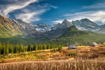 Obraz Autumn in Hala Gasienicowa, Tatra mountains, Poland - fototapety do salonu