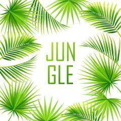 tropical background. jungle. frame. vector illustration