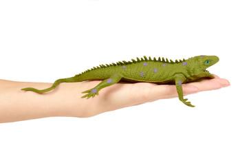 Silicone toy iguana in hand isolated on white background. Exotic animal game.