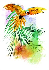 Colorful illustration with parrots in colors on an abstract background.