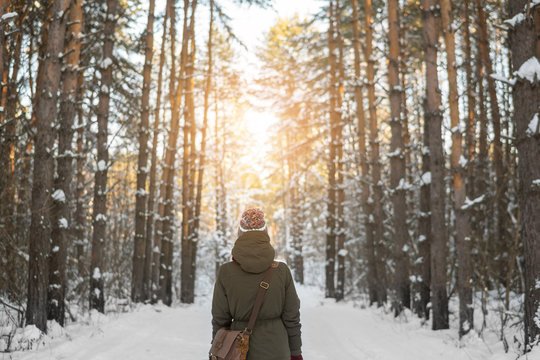 Woman walks a winter forest with the morning light streaming through the trees and illuminating the pine trees behind.