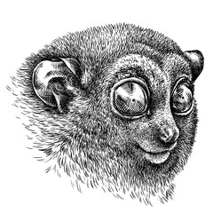 black and white engrave isolated tarsier illustration
