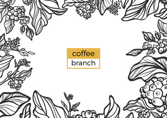 Template of black branch of coffee tree with leaves and natural coffee beans. Vector illustration